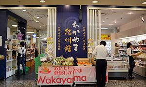 wakayama-eye